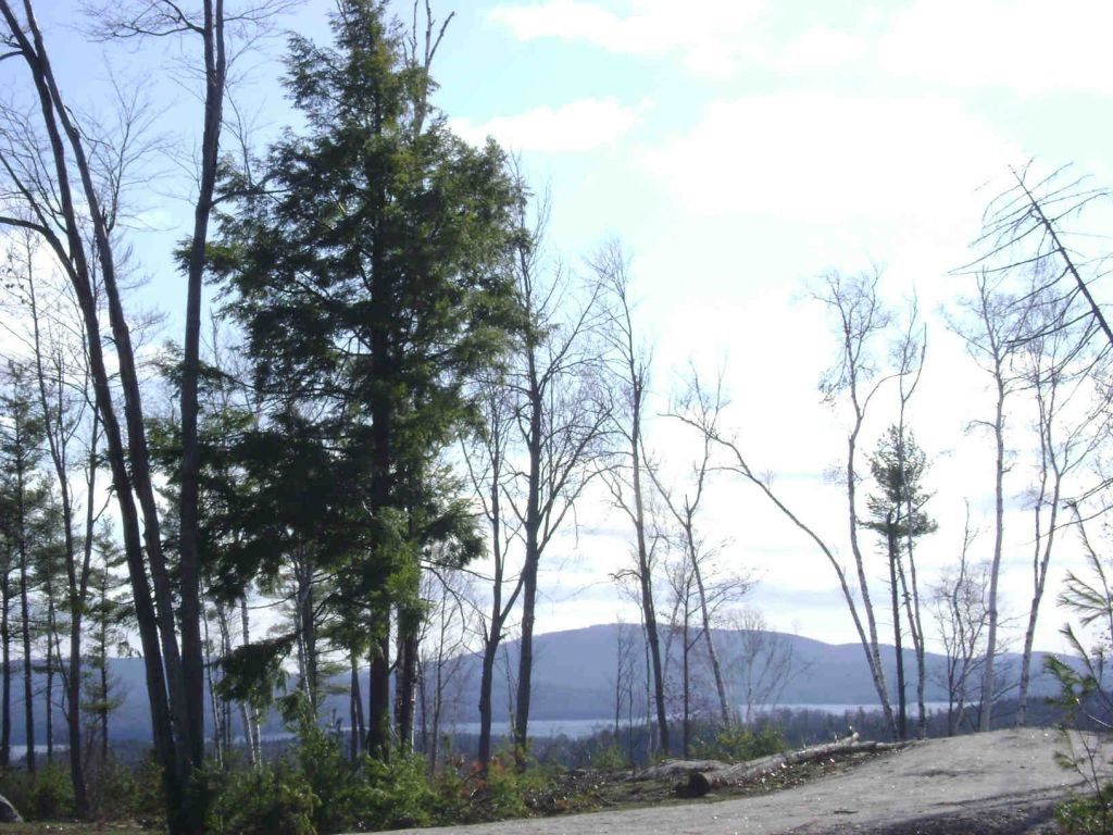 SUNAPEE NH LAND  for sale $$169,000 | 10.1 Acres  | Price Per Acre $14,752  | Total Lots 13