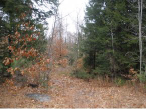 EFFINGHAM NH  LAND  for sale $34,900