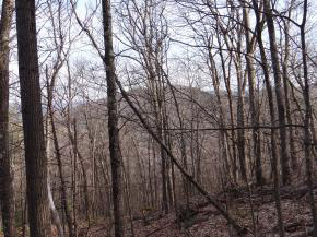 READING VT LAND  for sale $$187,000 | 72.7 Acres  | Price Per Acre $2,572  | Total Lots 3