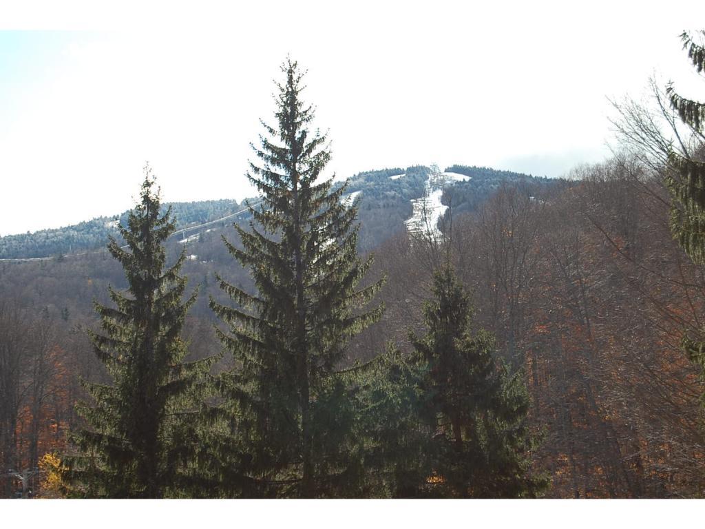 Mount-Snow-Real-Estate-4473600-1
