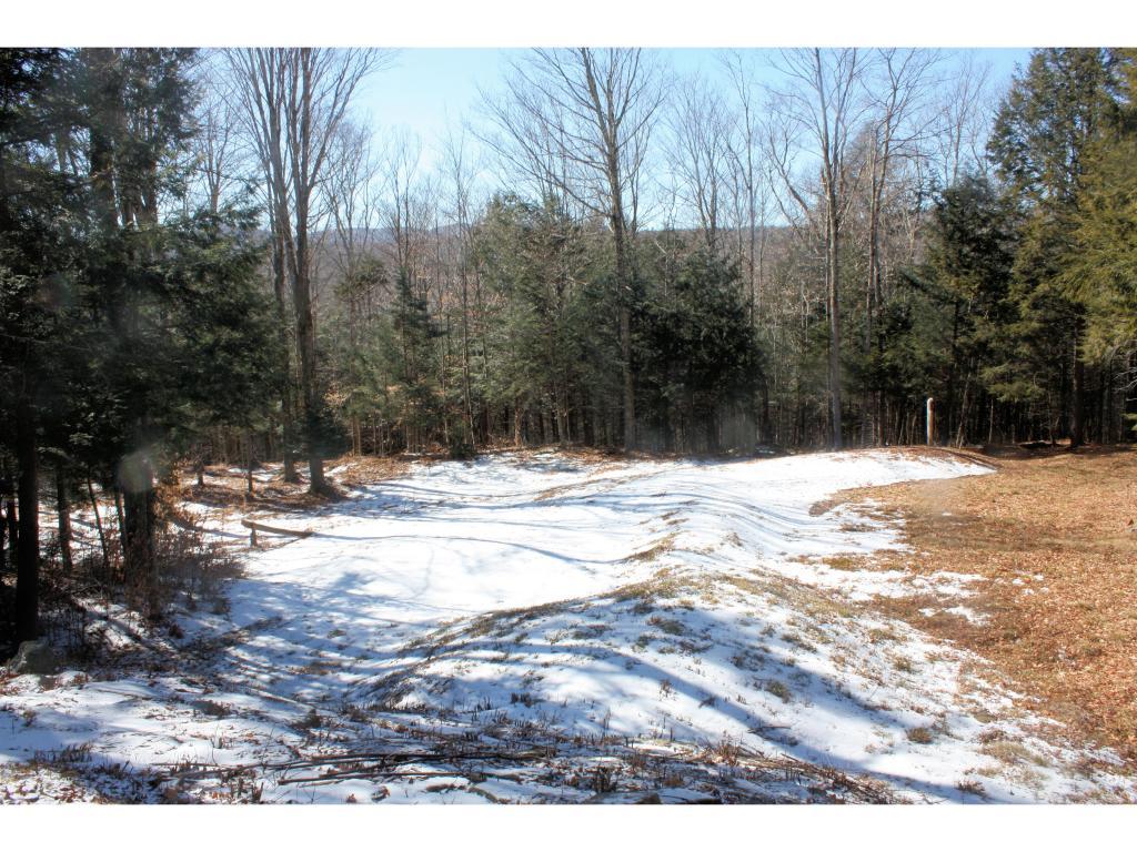 Mount-Snow-Real-Estate-4474354-11