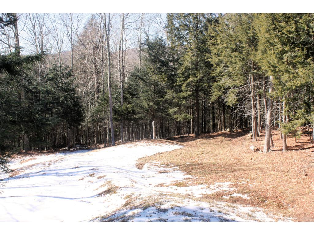 Mount-Snow-Real-Estate-4474354-12
