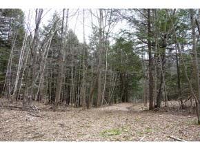 WEST WINDSOR VTLAND  for sale $$249,000   101.22 Acres    Price Per Acre $2,459