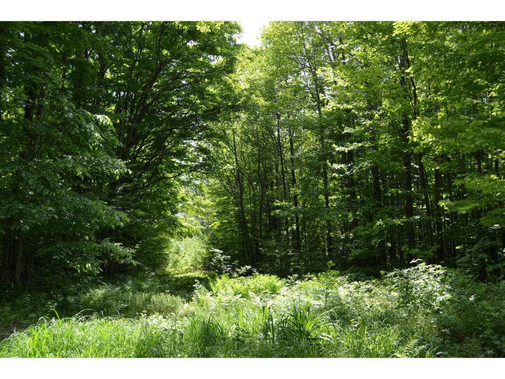 PRICE REDUCTION: This EXCEPTIONAL 21 ACRE...