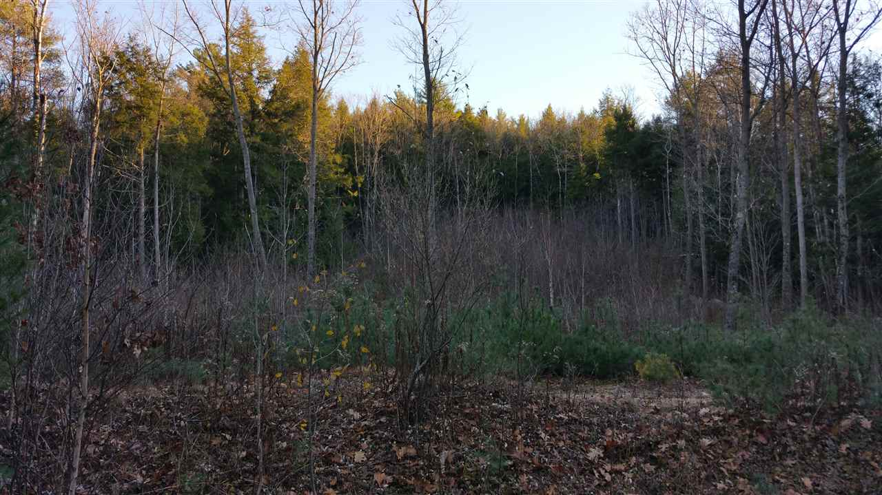 CROYDON NH LAND  for sale $$59,900 | 6 Acres  | Price Per Acre $11,500