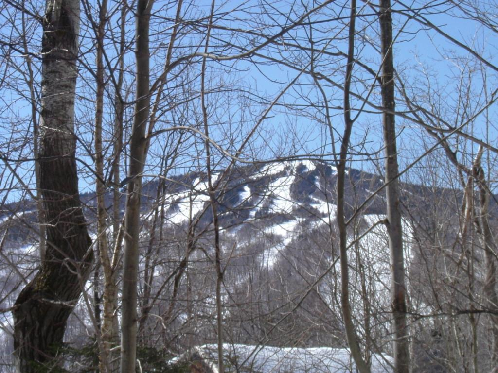 16 Lower Highlands (Lot 30), Dover, VT 05356