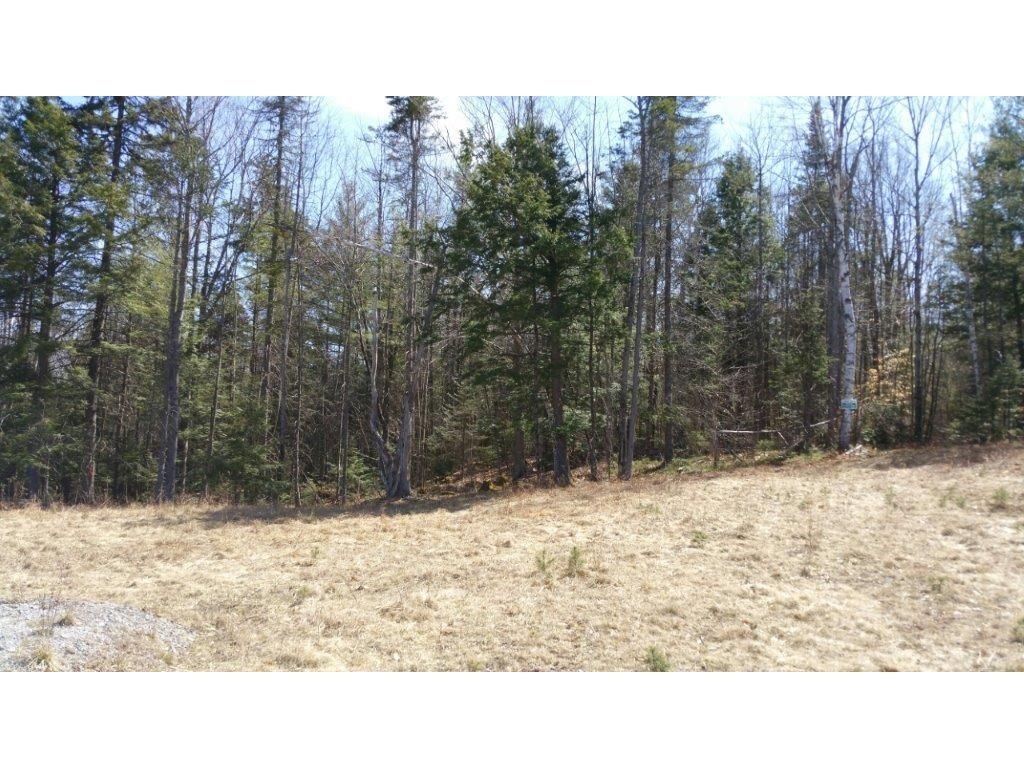SUNAPEE NH LAND  for sale $$70,000 | 4.9 Acres  | Price Per Acre $14,285  | Total Lots 11