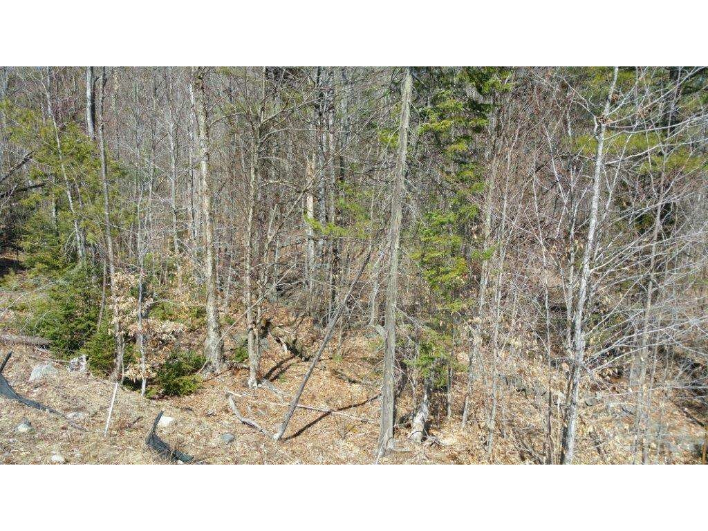 SUNAPEE NHLAND  for sale $$55,000 | 3.21 Acres  | Price Per Acre $17,133  | Total Lots 11