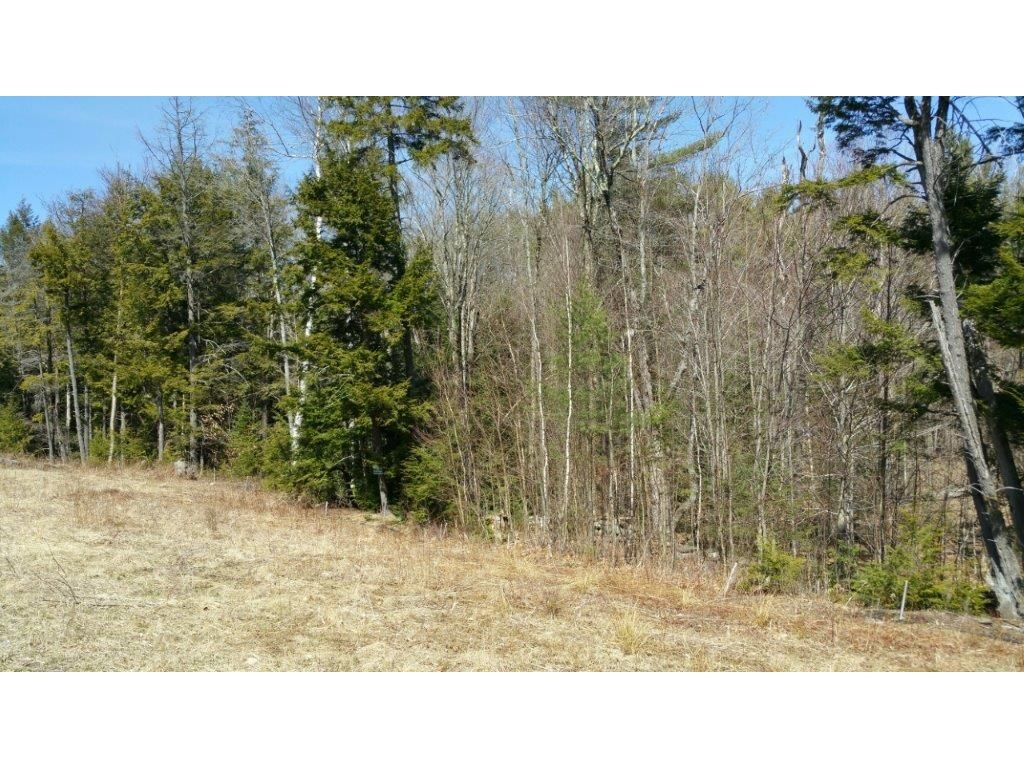 SUNAPEE NH LAND  for sale $$55,000 | 3.03 Acres  | Price Per Acre $18,151  | Total Lots 11