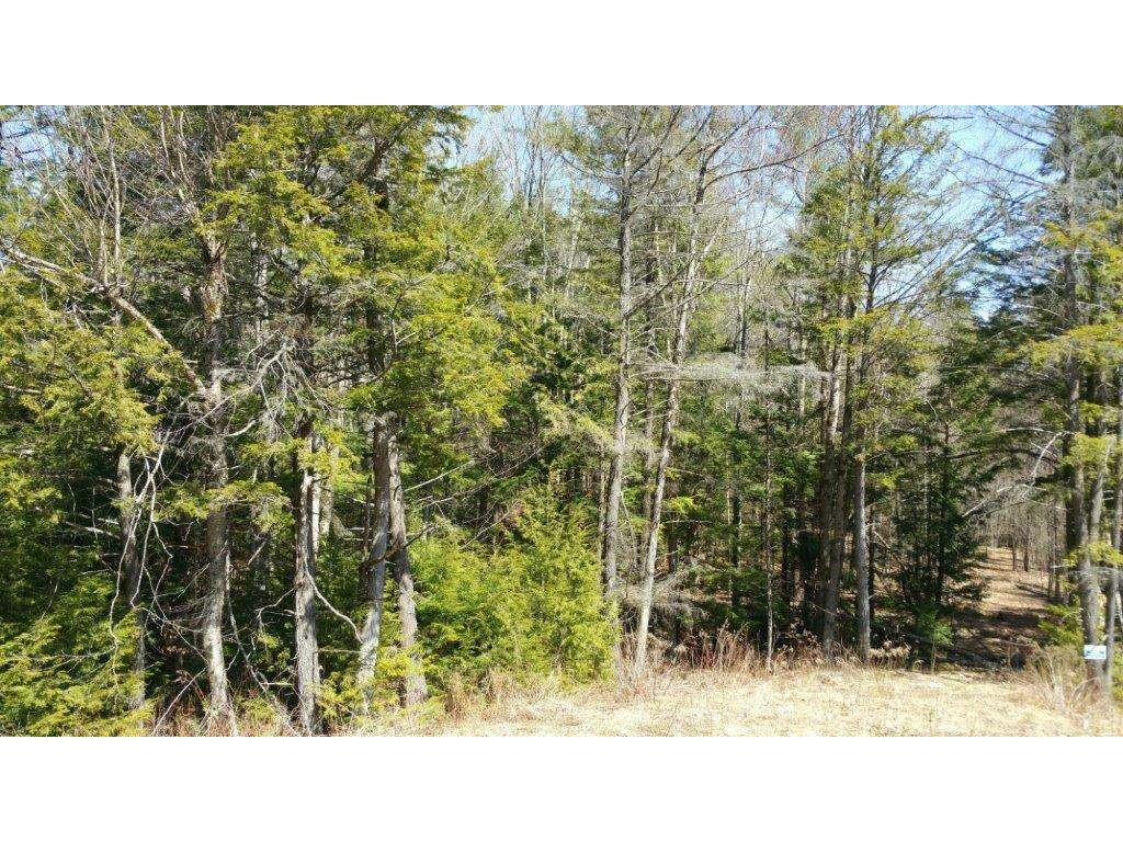 SUNAPEE NH LAND  for sale $$60,000 | 3.6 Acres  | Price Per Acre $16,666  | Total Lots 11