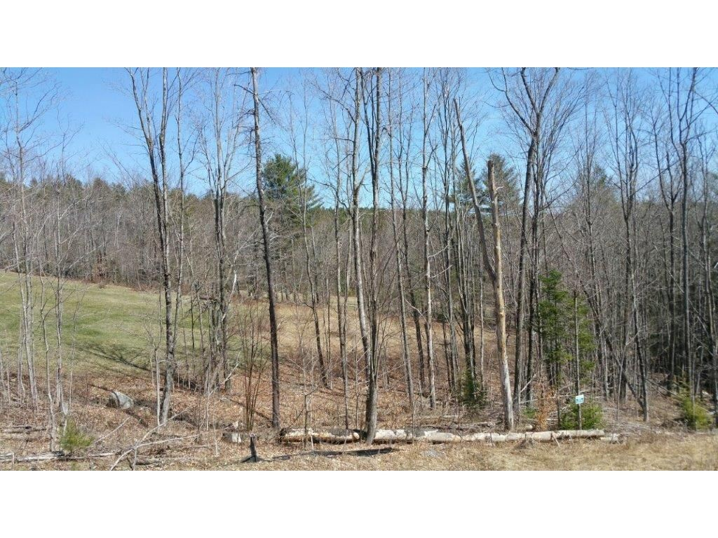 SUNAPEE NHLAND  for sale $$70,000 | 4.14 Acres  | Price Per Acre $16,908  | Total Lots 11