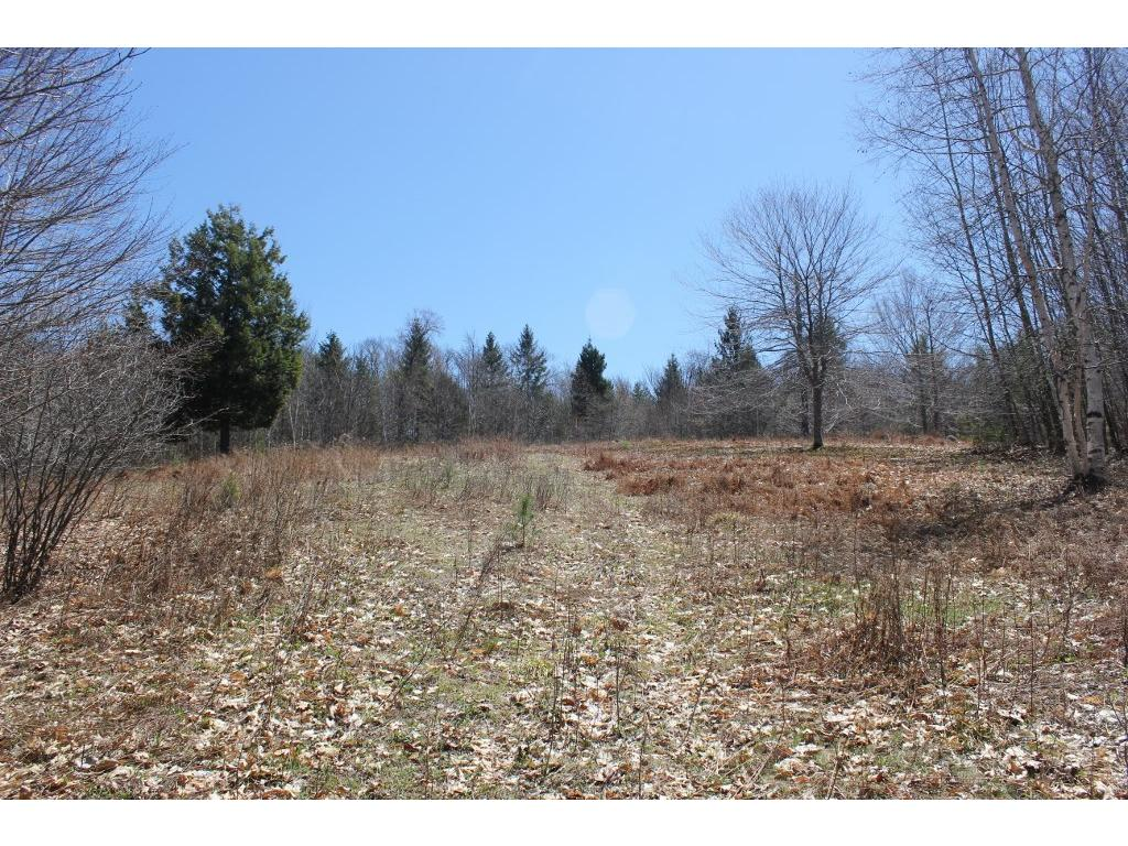 SPRINGFIELD VT LAND  for sale $$65,900 | 10.26 Acres  | Price Per Acre $6,812  | Total Lots 13