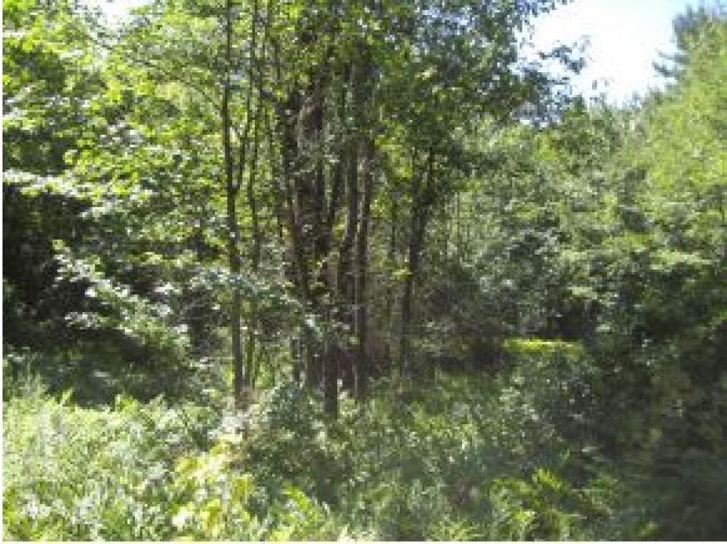 BROOKFIELD NHLand / Acres for sale