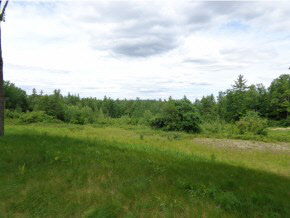 BOSCAWEN NH LAND  for sale $$52,900 | 2.26 Acres  | Price Per Acre $23,407