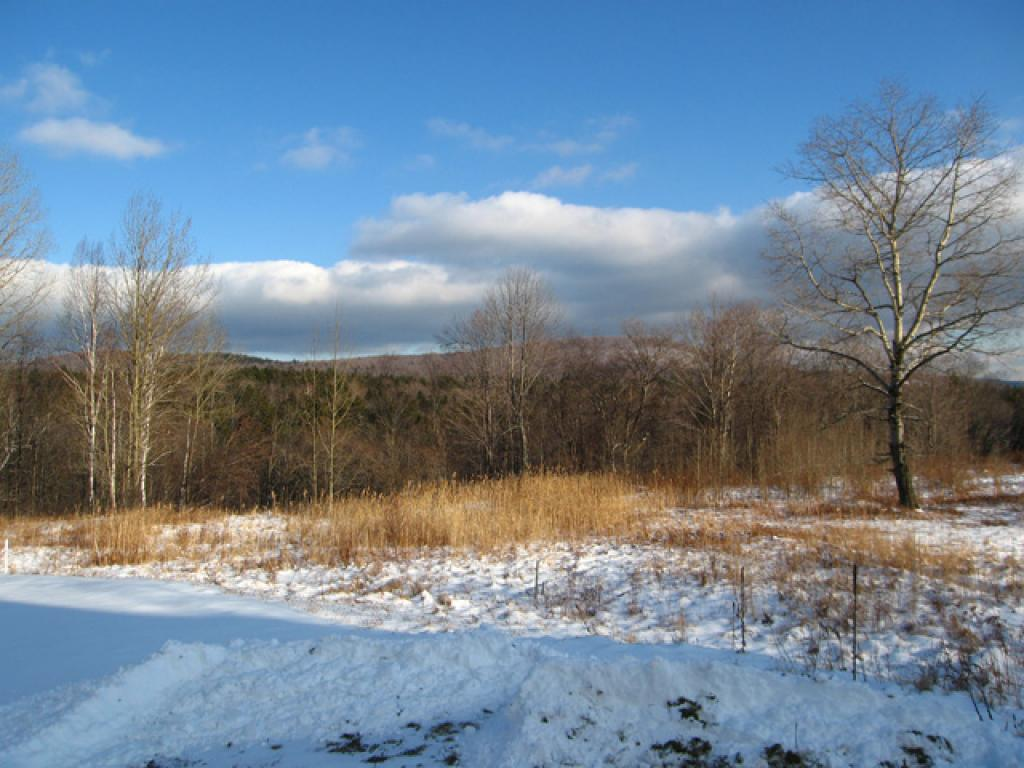 Mount-Snow-Real-Estate-4488135-1