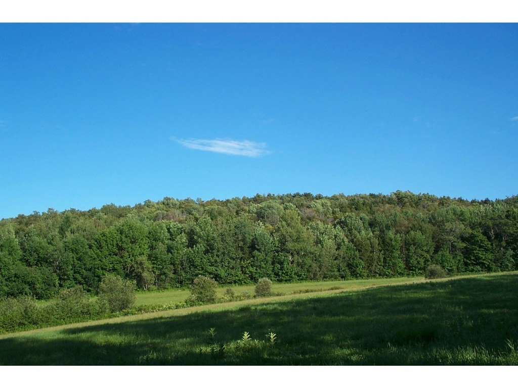 BARNARD VT LAND  for sale $$369,000 | 64.55 Acres  | Price Per Acre $5,716