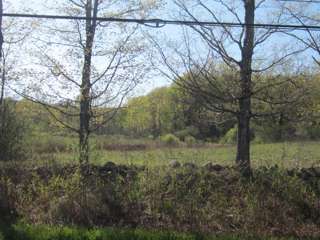 Springfield VT 05156 Land  for sale $List Price is $40,000