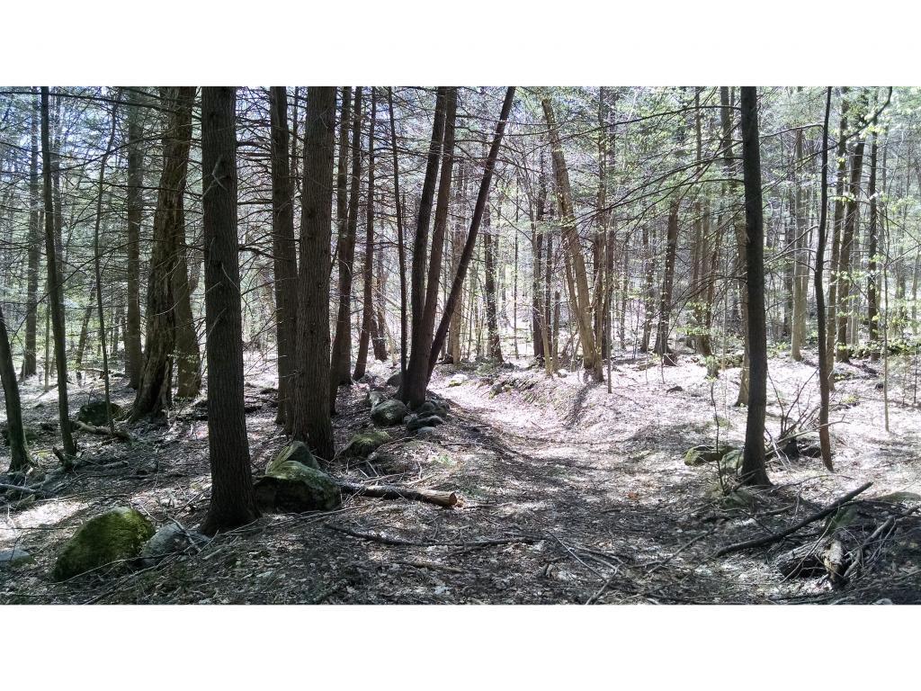 Mount-Snow-Real-Estate-4489866-9