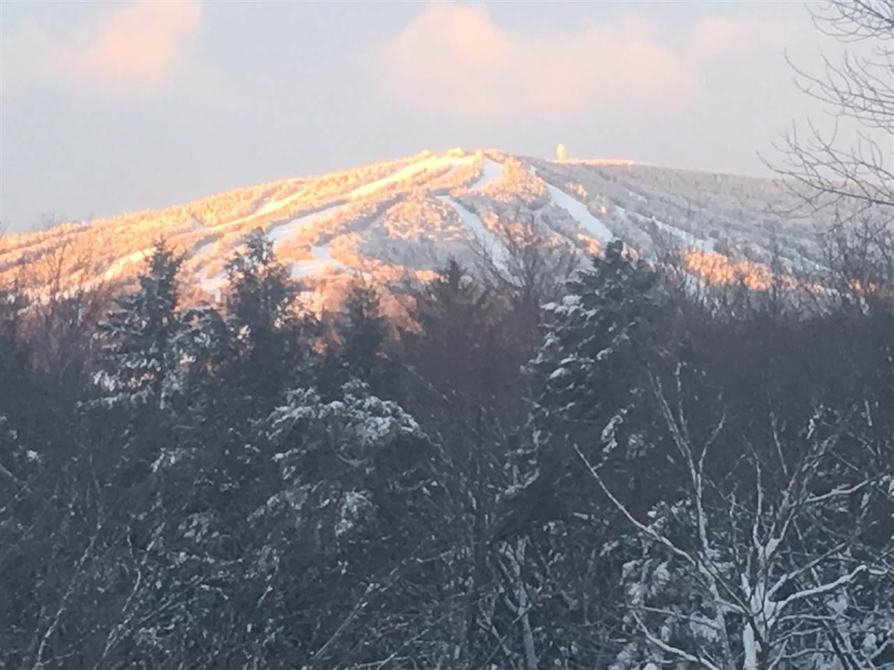 Mount-Snow-Real-Estate-4491986-1