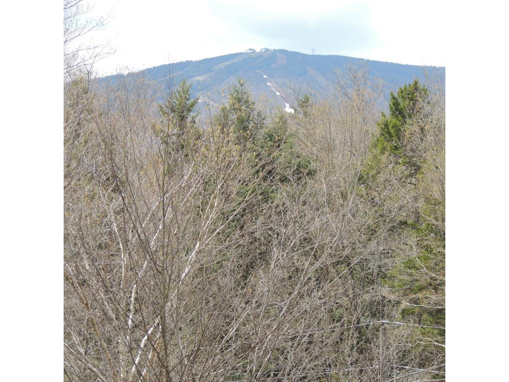 Mount-Snow-Real-Estate-4491986-2