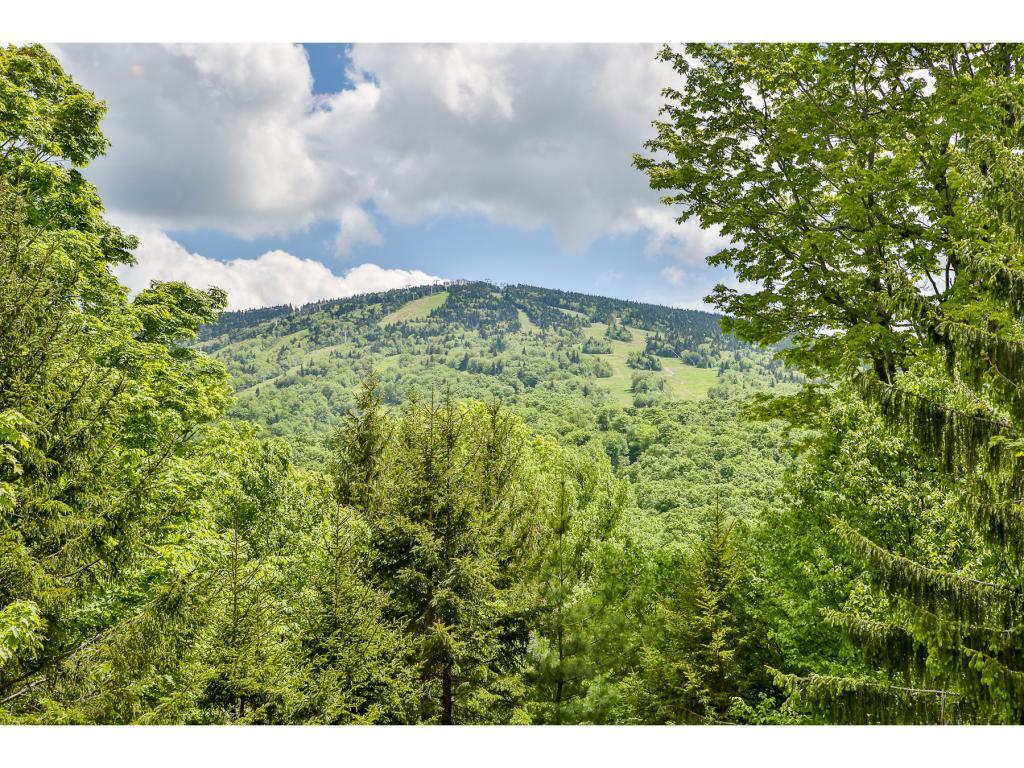 Mount-Snow-Real-Estate-4494641-3
