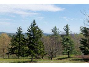 Mount-Snow-Real-Estate-4495611-4