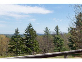 Mount-Snow-Real-Estate-4495623-3
