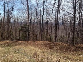 Mount-Snow-Real-Estate-4495623-7