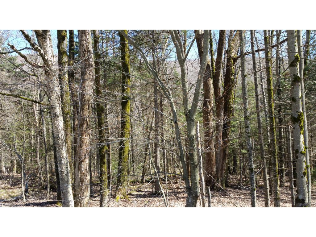 STAMFORD VTLAND  for sale $$13,900   4.30 Acres    Price Per Acre $0