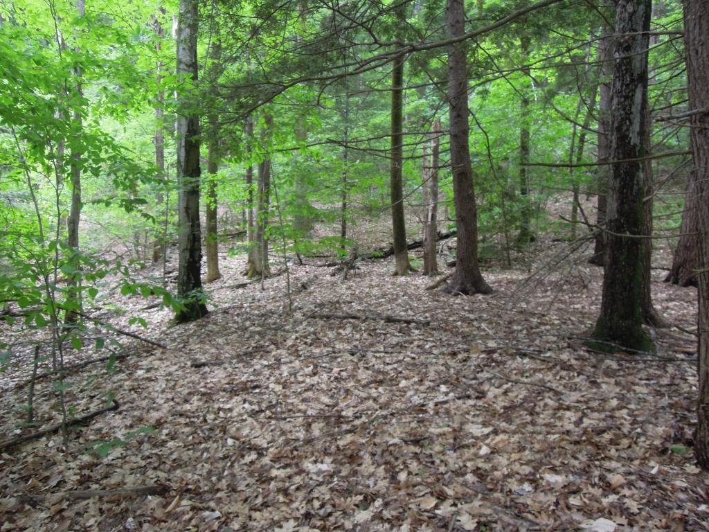 Nice 6.9 acre wooded building lot close by the MA...