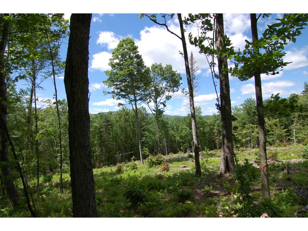CROYDON NH LAND  for sale $$45,000 | 8.35 Acres  | Price Per Acre $5,988