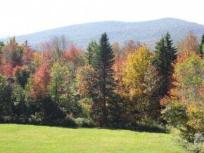 Mount-Snow-Real-Estate-4498625-2