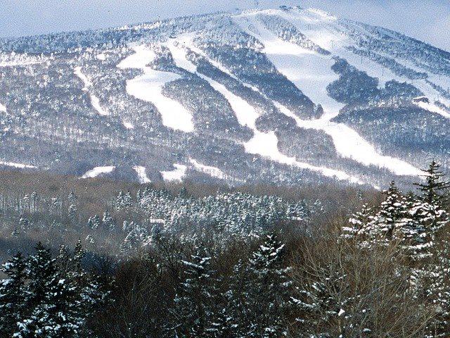 Mount-Snow-Real-Estate-4500043-2