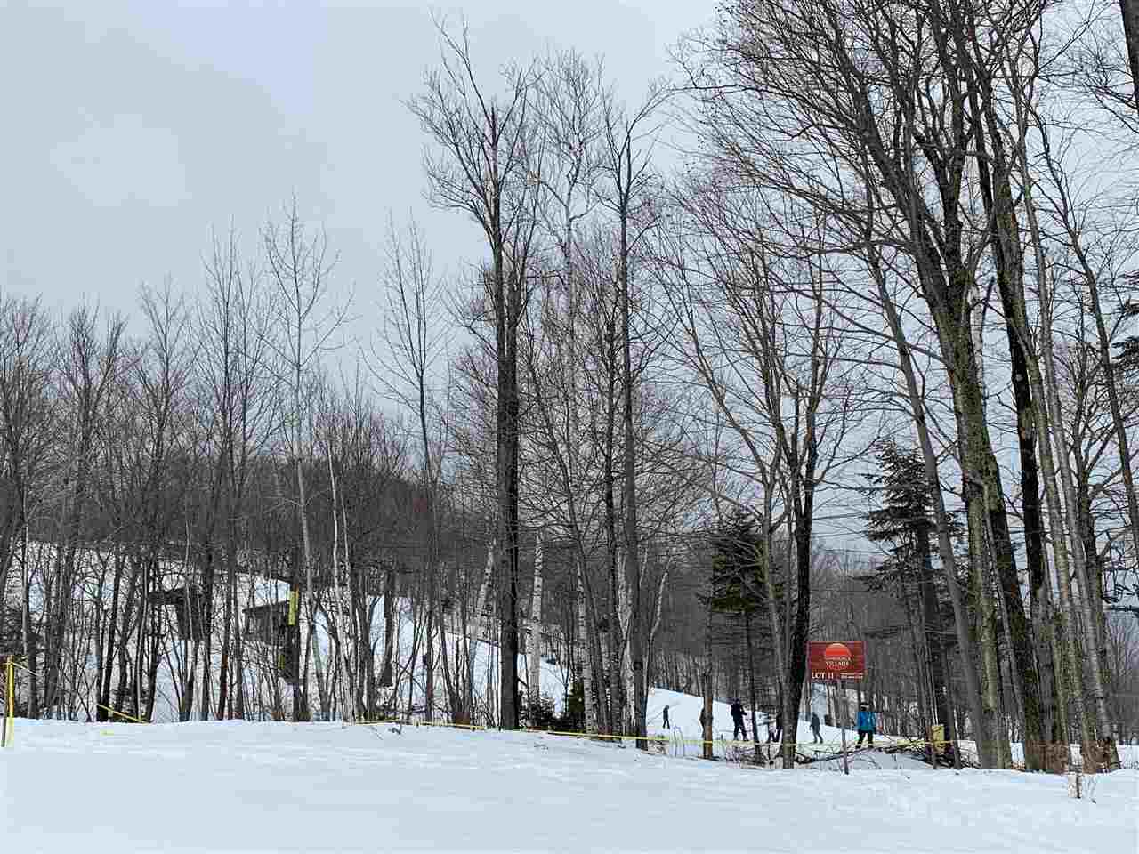 Trail-side location on Mount Snow. This is part...