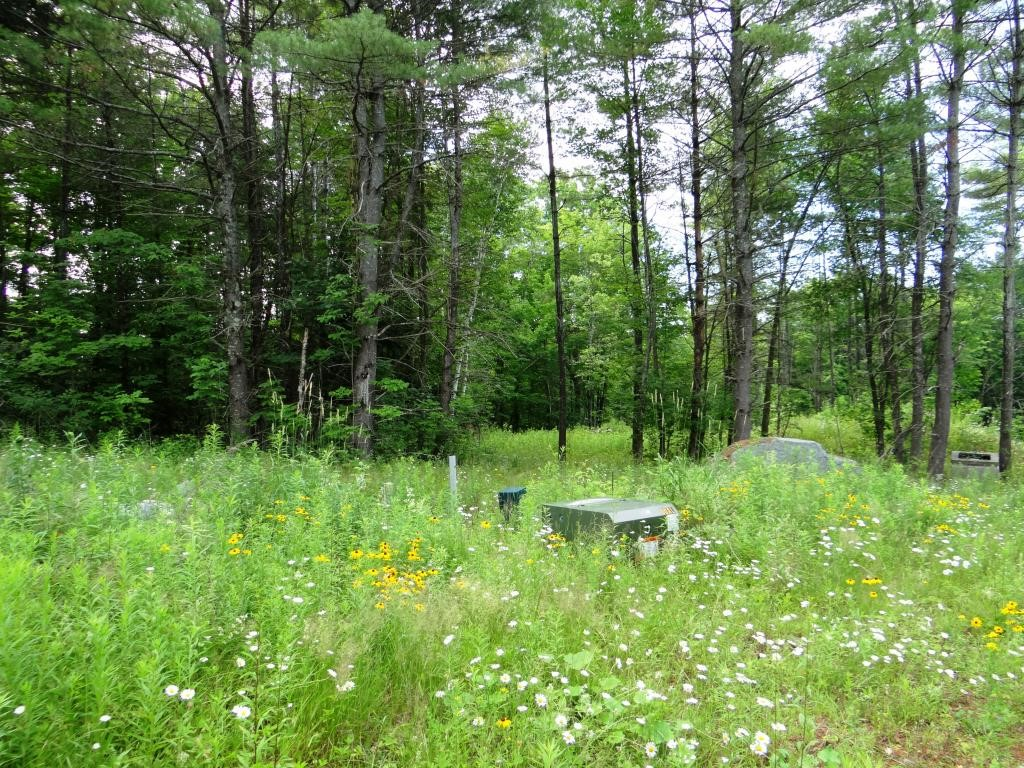 PLAINFIELD NH LAND  for sale $$65,000 | 1.52 Acres  | Price Per Acre $49,342