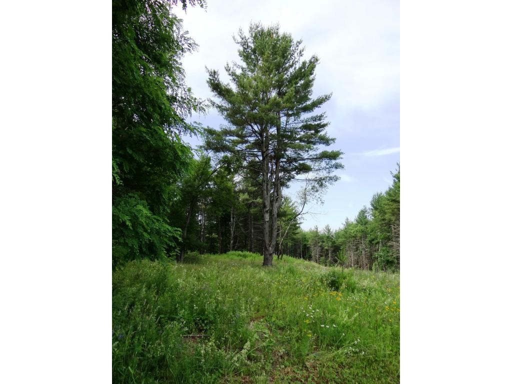 Plainfield NH 03781 Land  for sale $List Price is $65,000