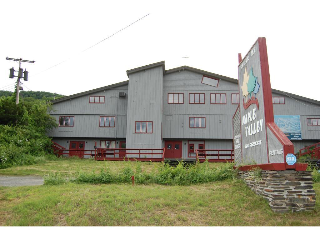 Mount-Snow-Real-Estate-4503063-10