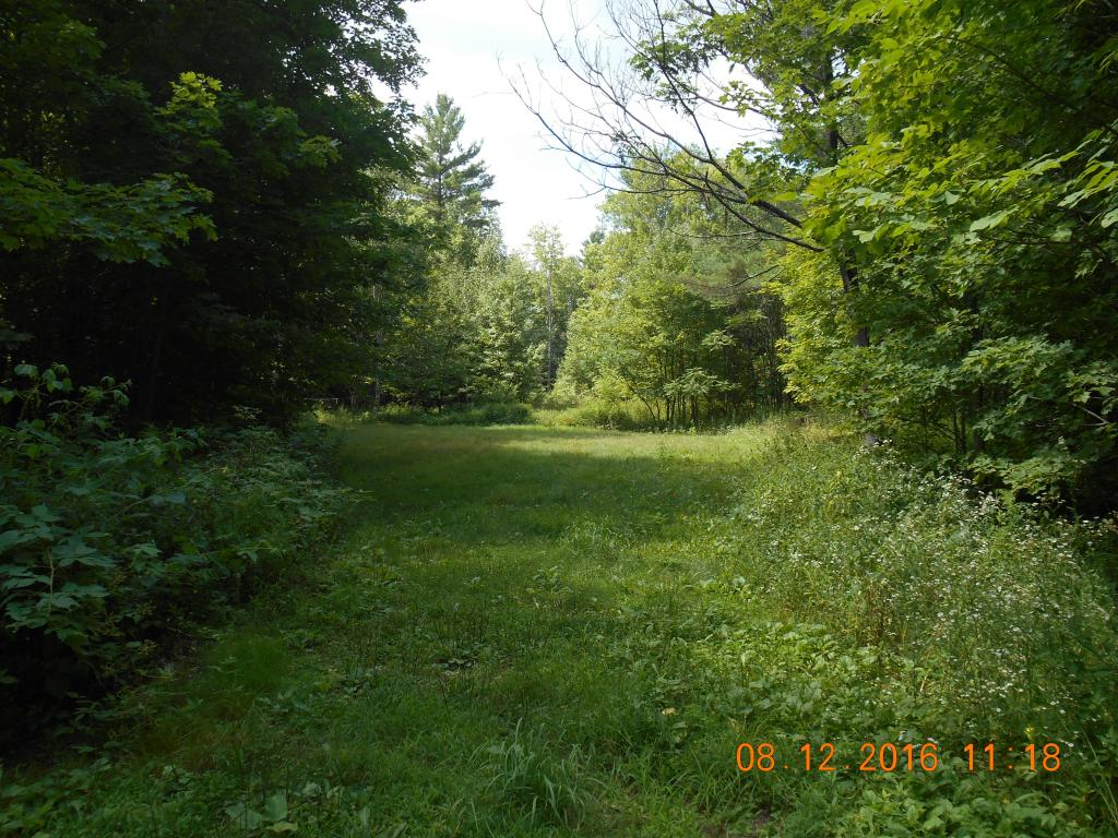Lempster NH 03605 Land  for sale $List Price is $69,900