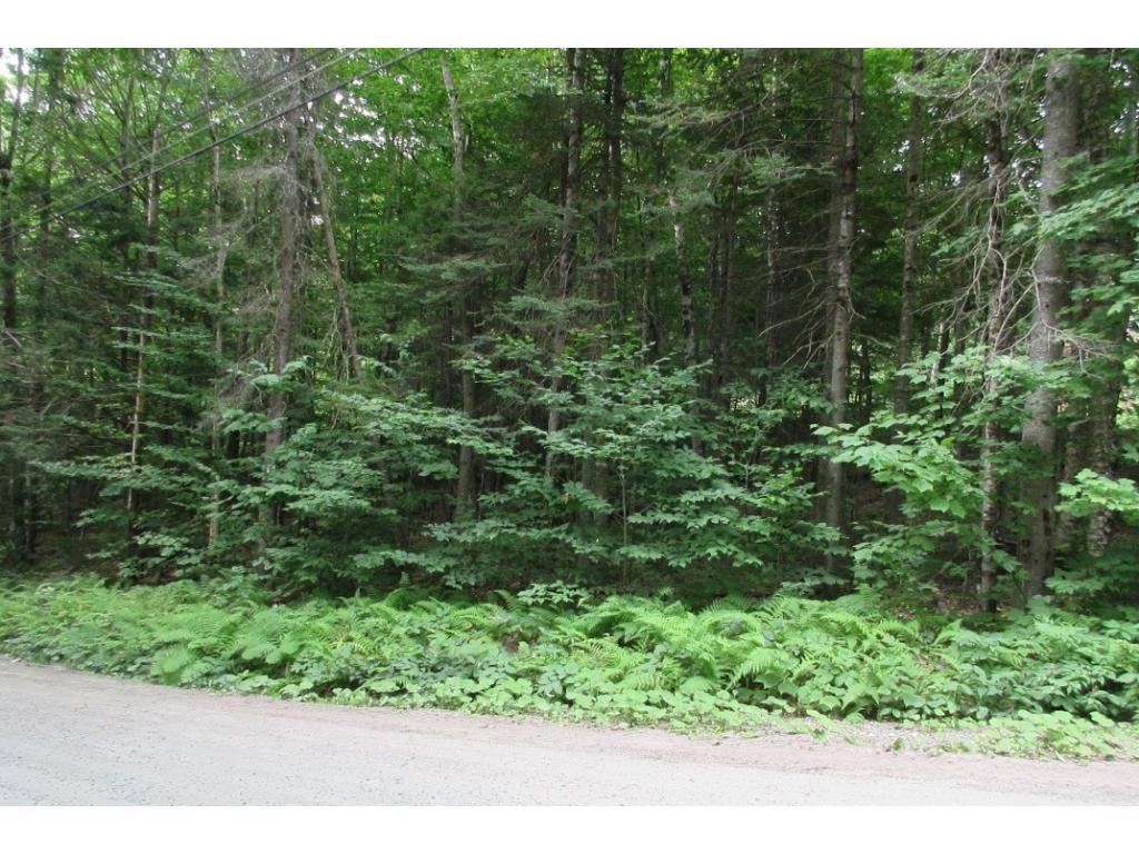 Newbury NH 03255 Land  for sale $List Price is $25,000