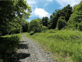 Beautiful pastoral 10+ acre building lot on a...