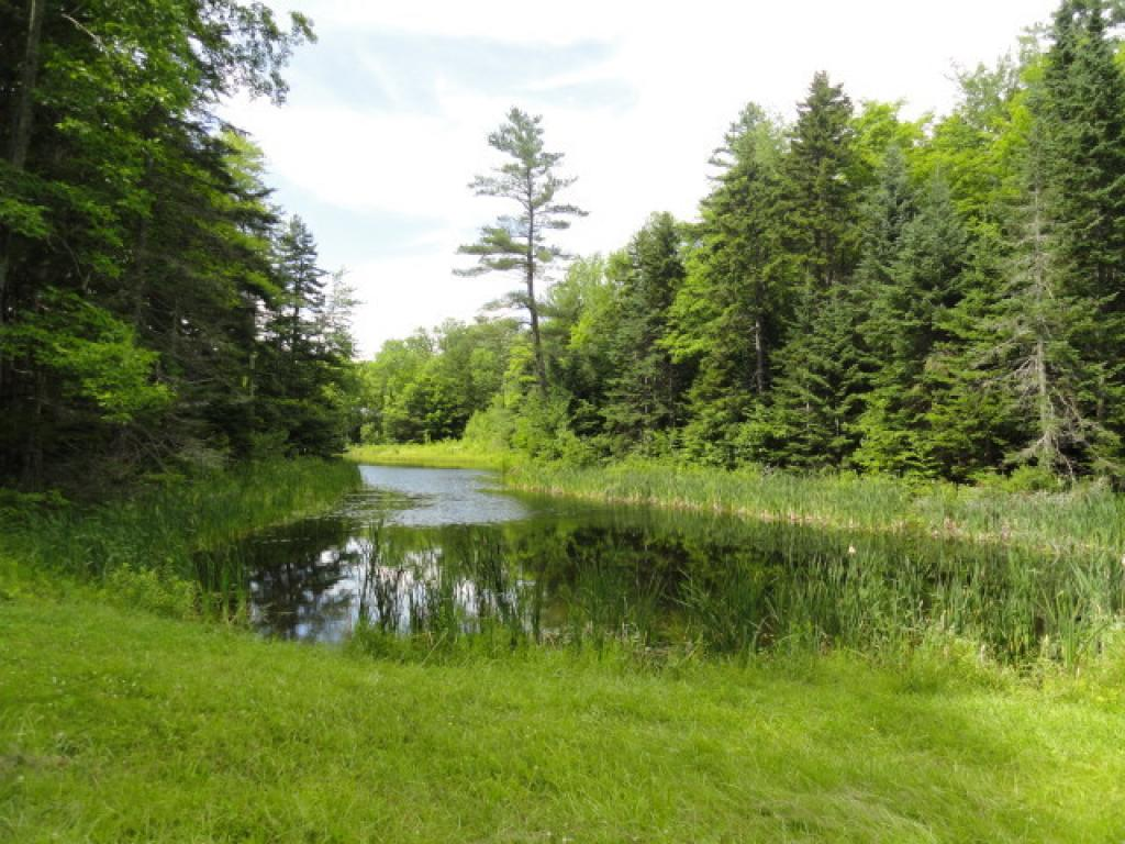 Pond Location Lot E5A at Loon Circle in Powder...