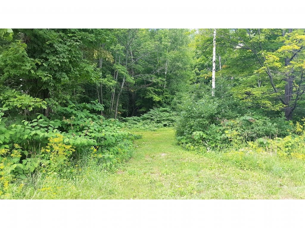 Lot 6 Route 100, Plymouth, VT 05056