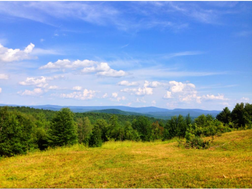 HARTLAND VT LAND  for sale $$299,000 | 42.4 Acres  | Price Per Acre $7,051