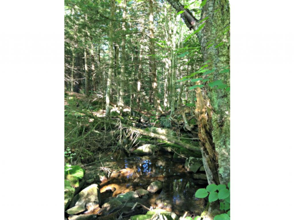 Nicely wooded 3+acre parcel with brook located on...