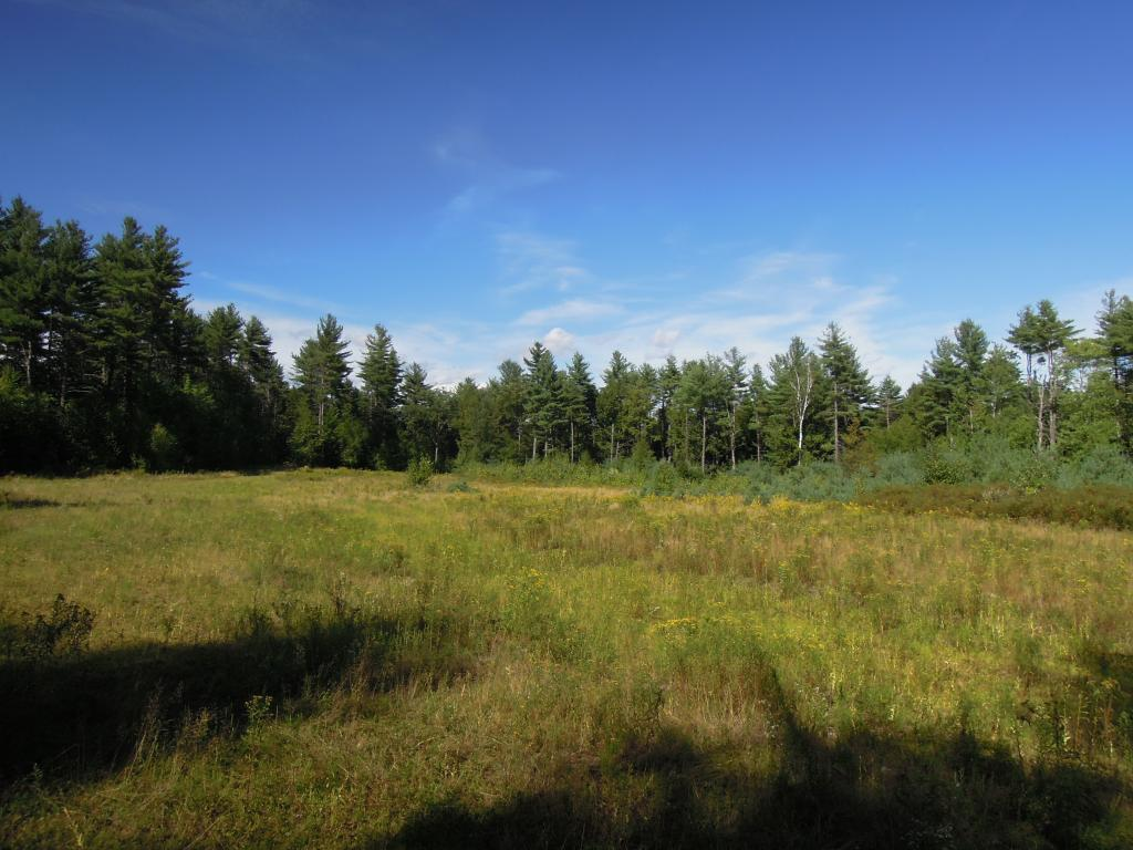 A rare find! A Large 400 acre tract in...