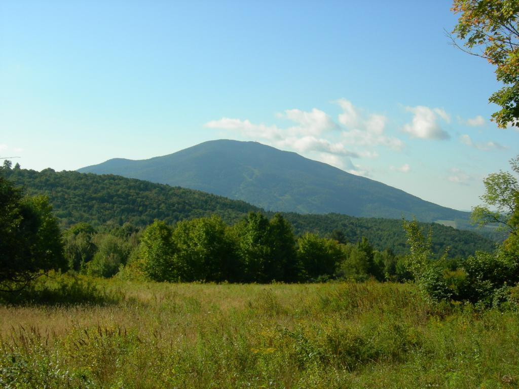 WEST WINDSOR VT LAND  for sale $$325,000 | 50.7 Acres  | Price Per Acre $6,410