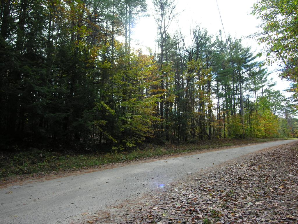 Newbury NH 03255 Land  for sale $List Price is $22,500