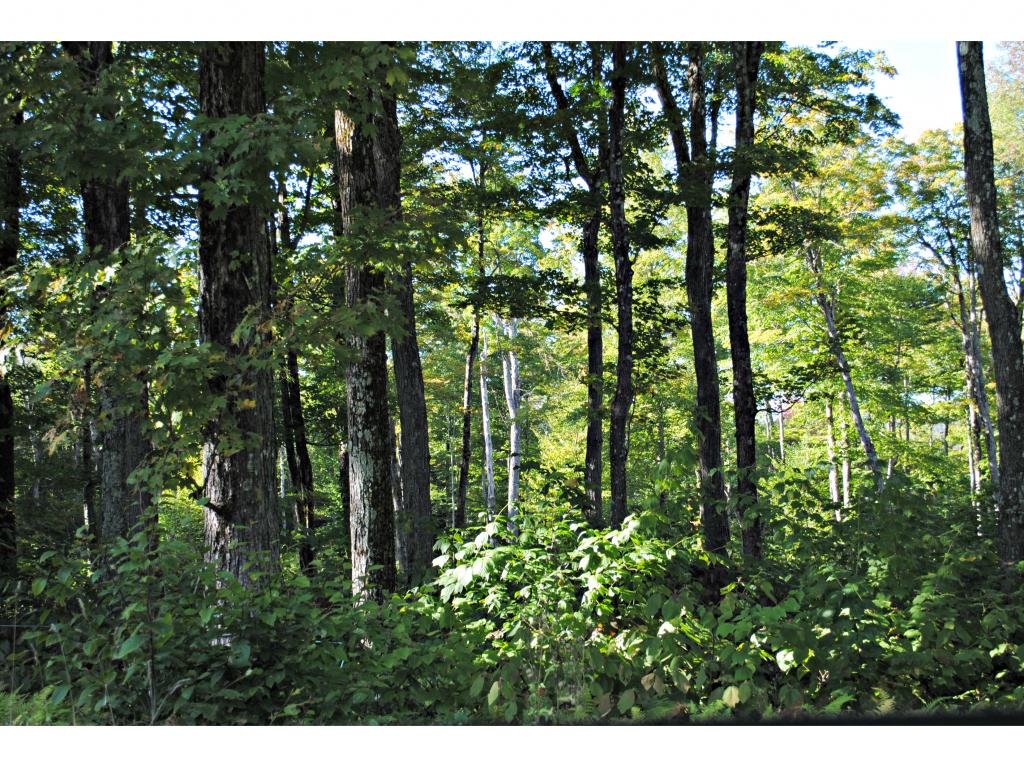 Lovely wooded lot off of Town Hill Road. Over two...