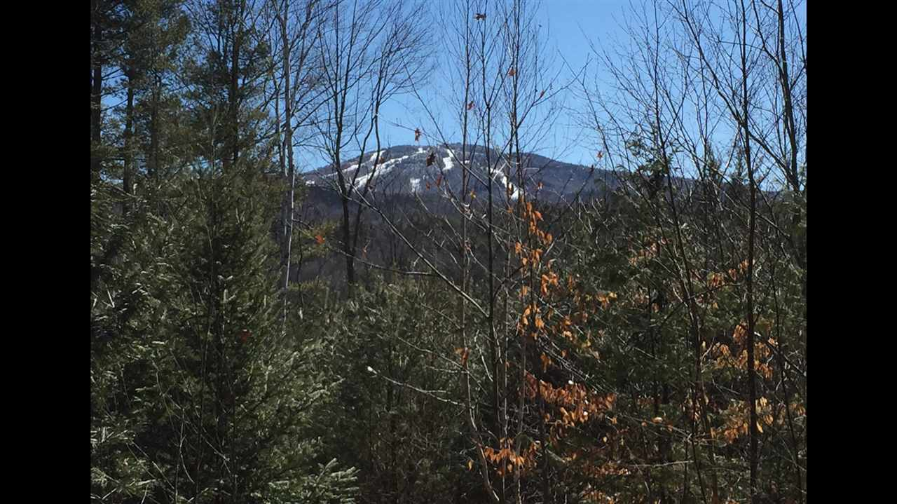 Sunapee NH 03782 Land  for sale $List Price is $60,000