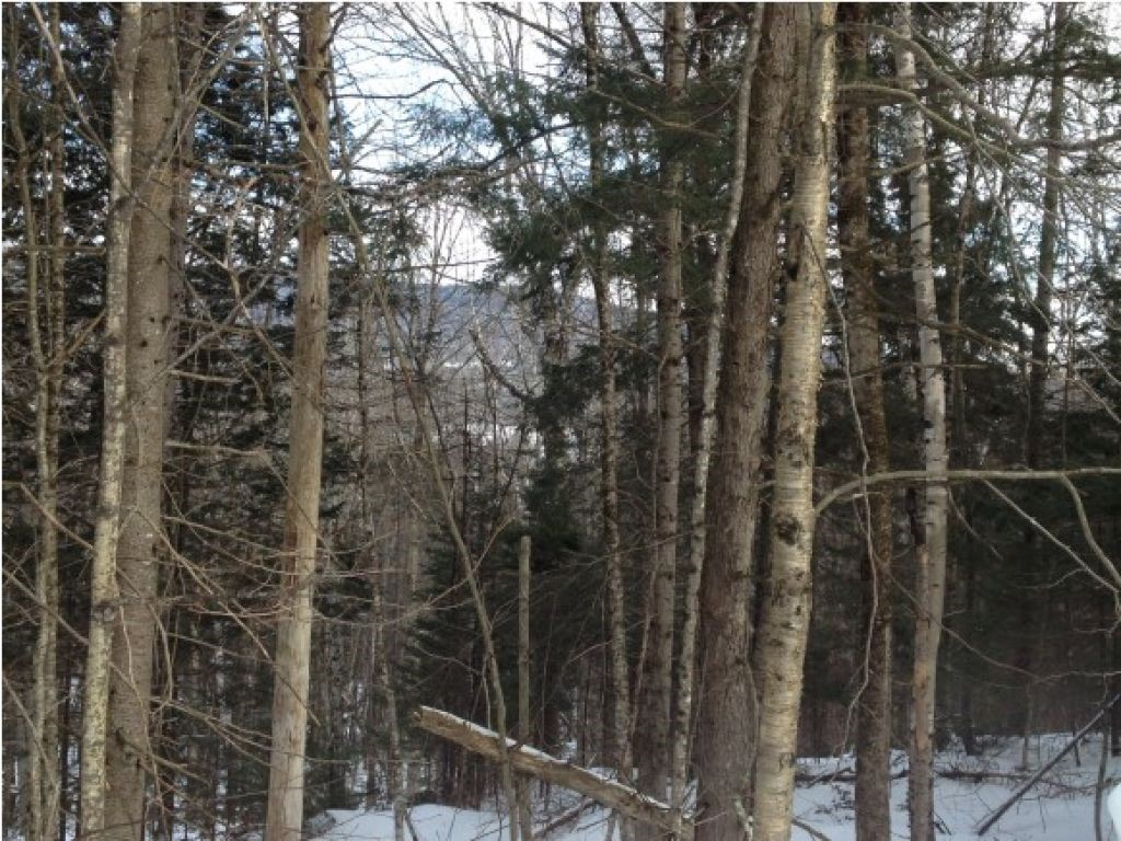 Lot 37 Highland View Road, Weston, VT 05161